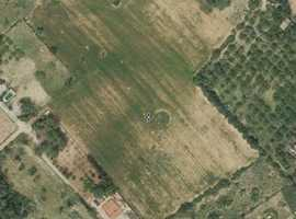 PLOT FOR A VINEYARD IN SENCELLES. SOIL PRODUCES QUALITY GRAPES 230K¬