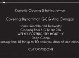 Domestic Cleaning And Ironing Service