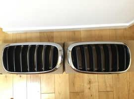 BMW X5 FRONT GRILLES