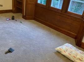 Carpet & Vinyl Fitter (Edinburgh