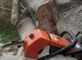 Country tree services