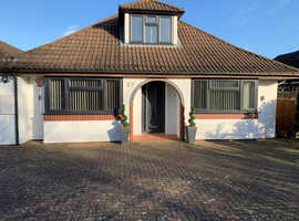 Beautiful renovated detached 5 bedroom house available