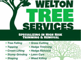 Welton Tree Services Nottinghamshire