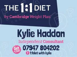 1:1 diet