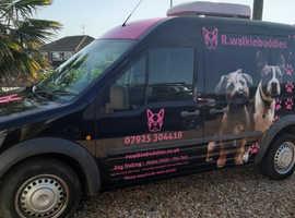 R.walkinbuddies (Professional Dogwalker and pet care services)