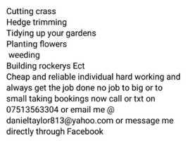 Taylors gardening