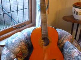Yamaha Classical Guitar G-65-1