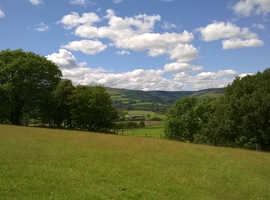 Four acre field with mains water and good road access in Powys