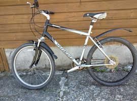 Man's Specialized Mountain Bike