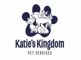 Katie's Kingdom