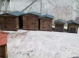 Dog boxes,dog kennel,cat boxes