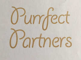 Perfect pets need a Purrfect Partner!