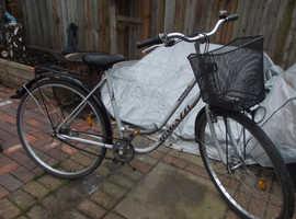 Rugazzi Liner ladies push bike