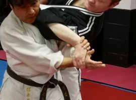 HAPKIDO, the Korean Art of Self Defence