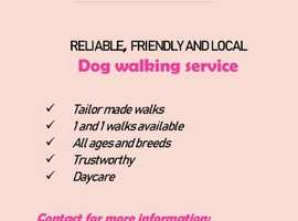 Reliable , Fun and Friendly Dog Walking and Pet sitting