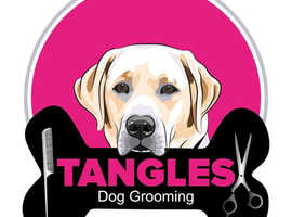 Tangles Dog Grooming & Microchipping