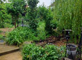 3 bed whitwell 30 sq metre cabin in garden