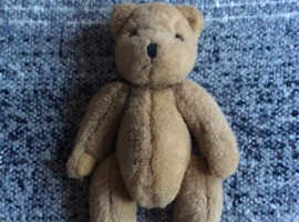 Very old bear