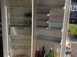 Lonely Bosch large Fridge needs new owner.