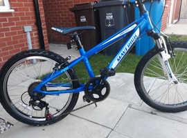 Maverick pro cycle 20