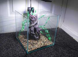 Nano /shrimp / betta fish tank aquarium