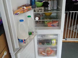 Fridge freezer curry's essentials