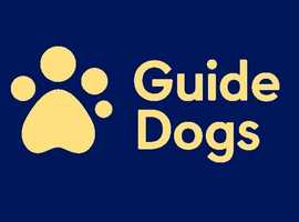 Group Co-ordinator for Winchester Guide Dogs