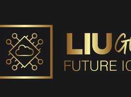 Your loyal IT Service Provider - LiuGo