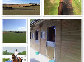 Stables groom needed, Eynsford