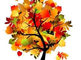 NSPCC AUTUMN COFFEE AND CRAFT FAIR SATURDAY 19th OCTOBER