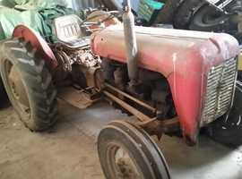 MASSEY FERGUSON TE35 1956 4 CYLINDER DIESEL ORIGINAL CONDITION GOOD RUNNING ORDER