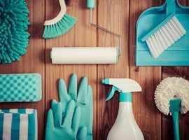 Housekeeper cleaner needing work