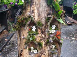 Rustic hardwood fairy houses