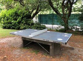 Anyone Up for Outdoor Table Tennis