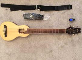Wasburn rover guitar