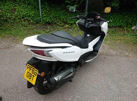 Honda forza  300cc scooter