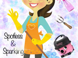 Meticulous Domestic Cleaner available in Kesgrave