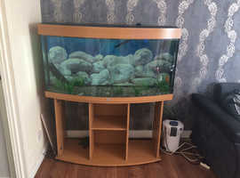 Jewel fish tank