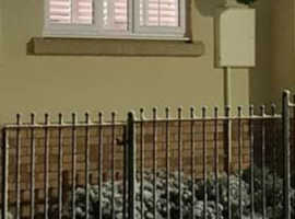 Manor wrought iron fencing