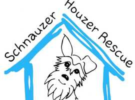 Need to rehome a Schnauzer? Contact Schnauzer Houzer Rescue UK