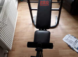 Pro Power Workout Bench and Weights