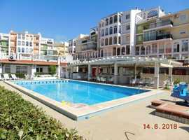 Torrevieja, Costa Blanca South Facing Furnished Studio Apartment 200 metres To Beach Close to all Amenities - OPEN TO OFFERS IN EUROS