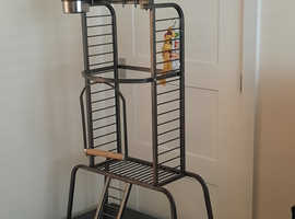 Parrot play stand