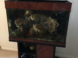 Percula 90 Marine fish tank complete
