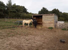 Sole use stables and 5 acres