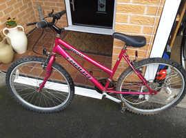 2x bikes both good condition