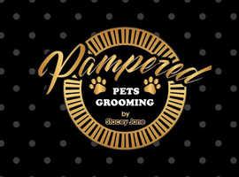Dog groomer in larbert