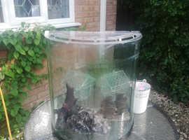 Quadrant fish tank