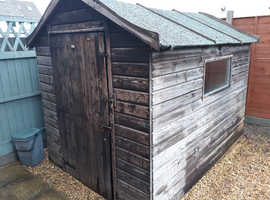 Free dismantled 9' x 6'  Apex Garden Shed