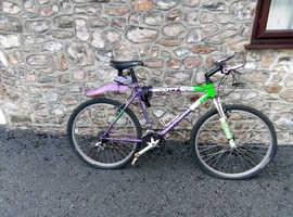 Limited Edition Scott Mountain bike